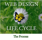 An image of CMS Conversion Web Life cycle website