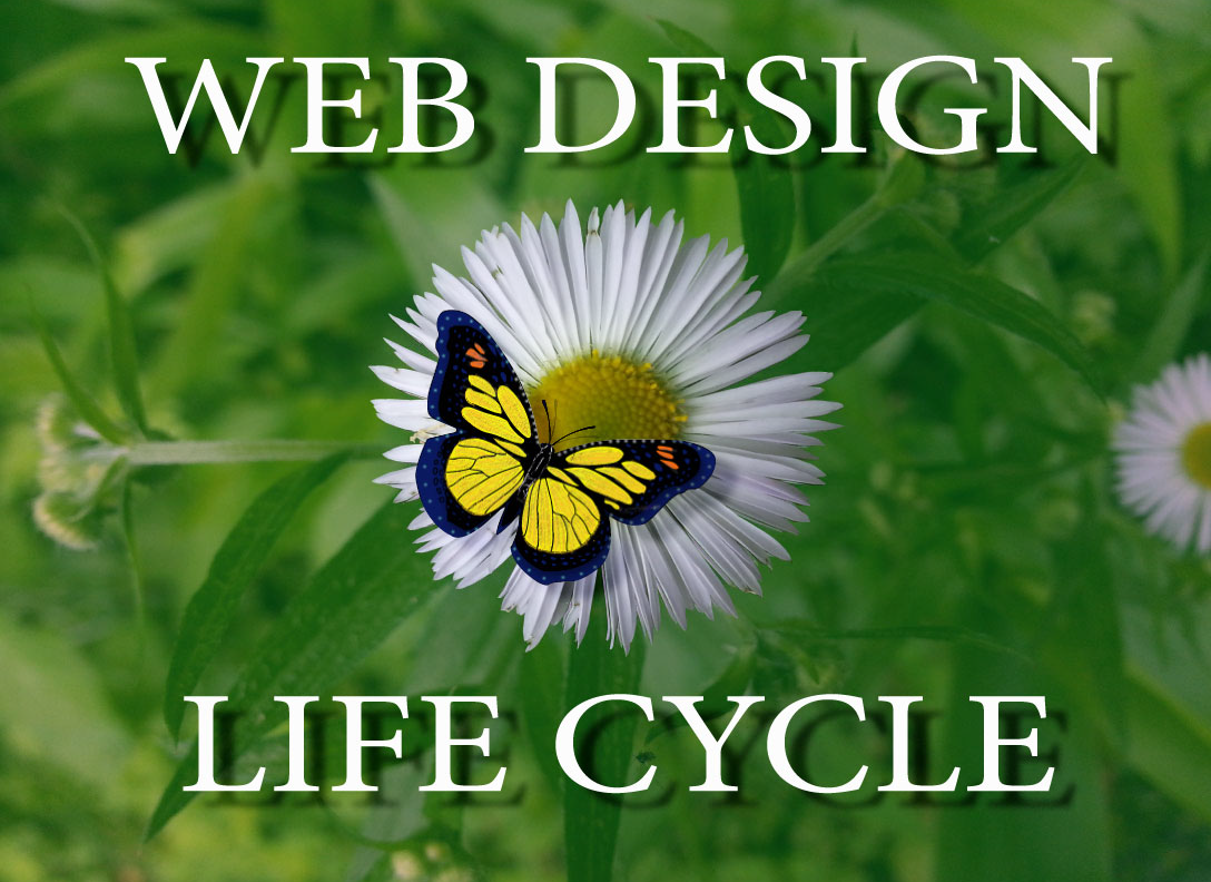 A center Image for the Web Design Life Cycle Web Page banner