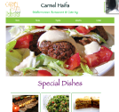An image of Carmel Haifa website design