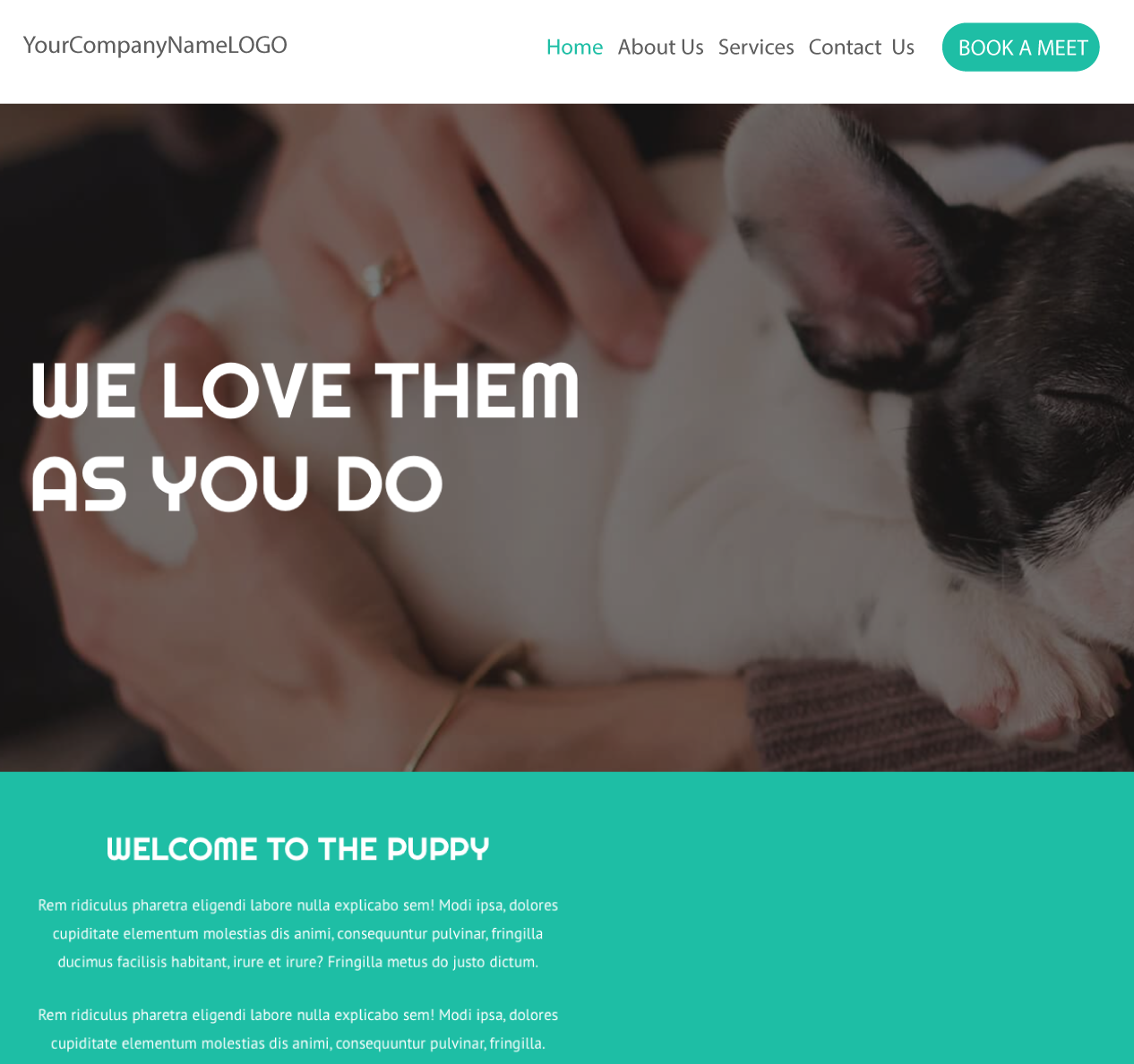 An image of a Love your Puppy new website design